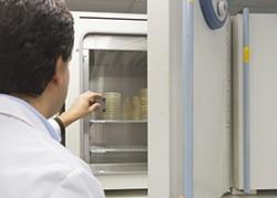Estufas de incubación microbiológica